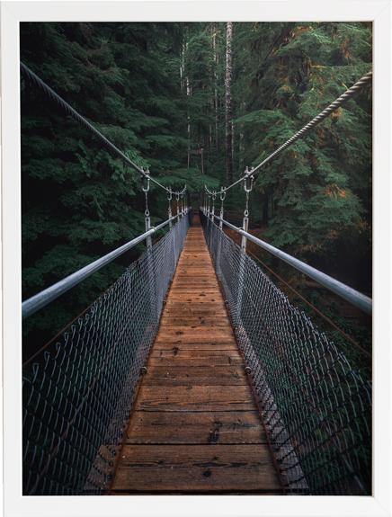 Bridge 3 obraz do domu