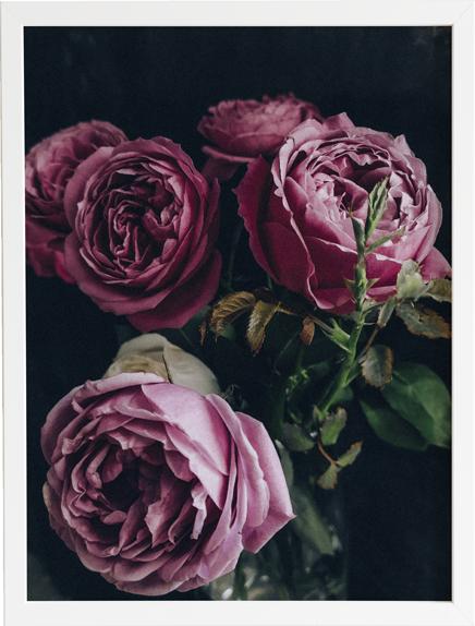Flower dark 1