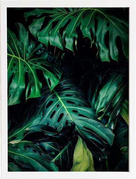 Green 11 obraz do domu