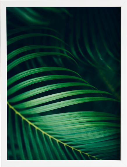 Green 12 obraz do domu