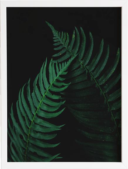 Green 5 obraz do domu