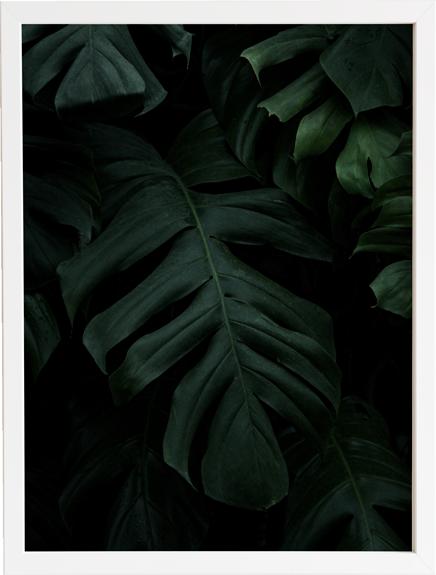 Green 6 obraz do domu